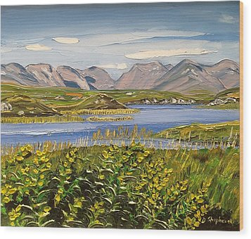 Bog Road Connemara Co Galway Wood Print