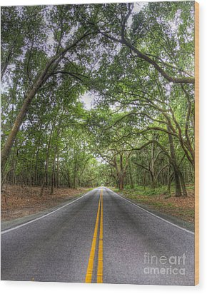 Bohicket Road Johns Island South Carolina Wood Print by Dustin K Ryan
