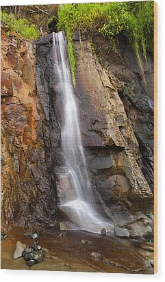 Boiler Bay Cascade Wood Print by Mike  Dawson