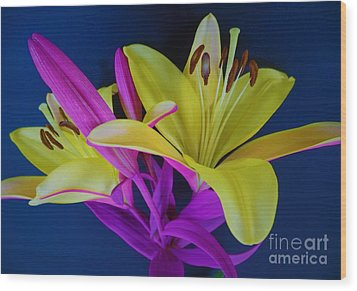 Wood Print featuring the photograph Bold Beautiful Flowers by Ray Shrewsberry