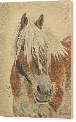 Wood Print featuring the drawing Bolero by Melita Safran