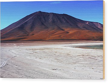 Wood Print featuring the photograph Bolivian Altiplano, South America by Aidan Moran