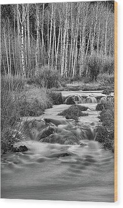 Bonanza Streaming Wood Print by James BO Insogna