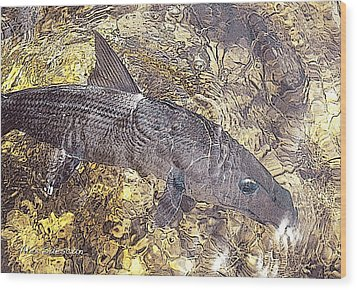 Bonefish World Wood Print by Alex Suescun