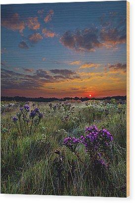 Bonnie's Meadow Wood Print by Phil Koch