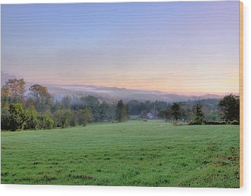 Wood Print featuring the photograph Bonnyvale Field by Tom Singleton