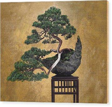 Bonsai 3 Wood Print