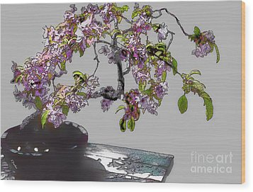 Bonsai Beauty Wood Print by Linda  Parker