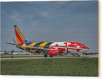Boeing 737 Maryland Wood Print