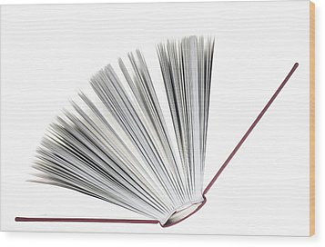 Book Wood Print by Frank Tschakert
