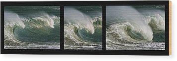 Boomer Beach Wood Print