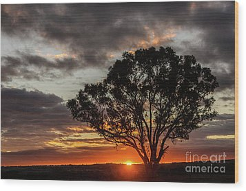 Boorowa Sunset Wood Print