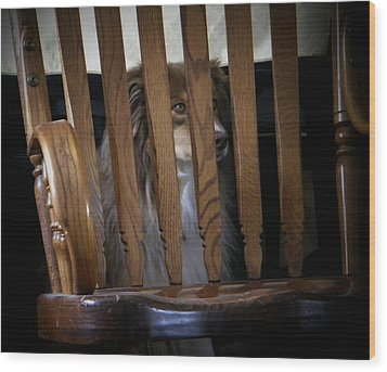 Wood Print featuring the photograph Bootsie by Lenore Senior