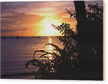 Boracay,philippians  2 Wood Print by Mark Ashkenazi