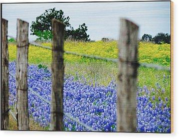 Border Blue Wood Print