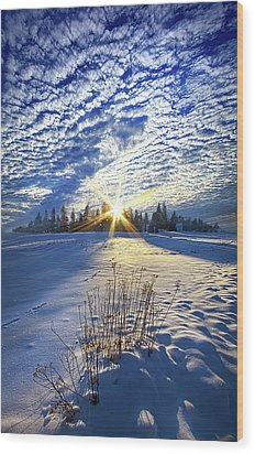 Wood Print featuring the photograph Born As We Are by Phil Koch