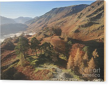 Borrowdale From Castle Crag Wood Print by Bryan Attewell
