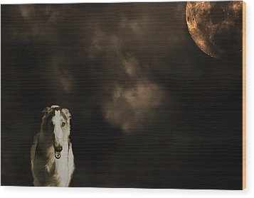 Wood Print featuring the photograph Borzoi Wolf Hound And Full Moon by Christian Lagereek