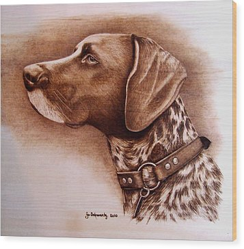 Boscoe Wood Print by Jo Schwartz