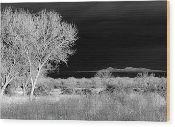 Wood Print featuring the photograph Bosque Del Apache - Infrared by Britt Runyon
