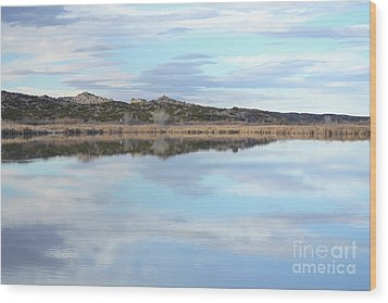 Wood Print featuring the photograph Bosque Desert Lake by Andrea Hazel Ihlefeld