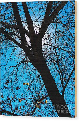 Bosque Silhouette Wood Print
