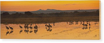 Bosque Sunrise Wood Print by Alan Vance Ley