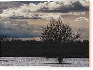 Wood Print featuring the photograph Bosque Sunset by Britt Runyon
