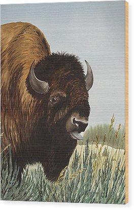 Boss Bull Wood Print by Bud Bullivant