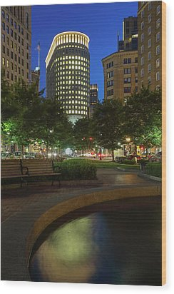 Wood Print featuring the photograph Boston Statler Park  by Juergen Roth