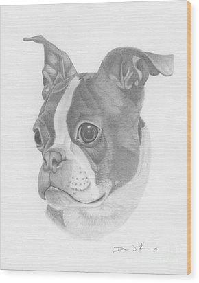 Boston Terrier Juno Wood Print
