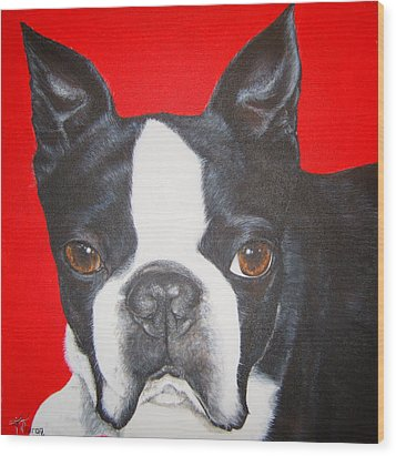 Boston Terrier Wood Print by Keran Sunaski Gilmore