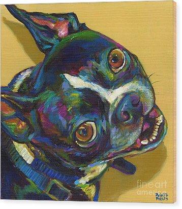Boston Terrier Wood Print by Robert Phelps