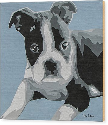 Boston Terrier Wood Print by Slade Roberts