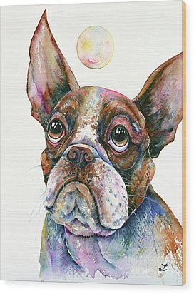 Wood Print featuring the painting Boston Terrier Watching A Soap Bubble by Zaira Dzhaubaeva