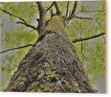 Botanical Behemoth Wood Print