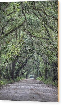 Botany Bay Country Road Wood Print by Dustin K Ryan