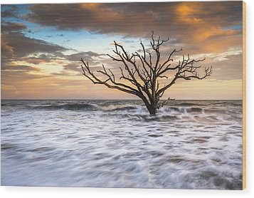 Botany Bay Edisto Island Sc Boneyard Beach Sunset Wood Print by Dave Allen