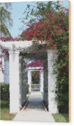 Bougainvillea Wood Print by Diane Merkle