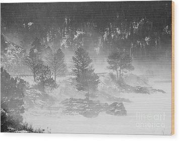 Boulder Canyon And Nederland Winter Landscape Wood Print by James BO  Insogna