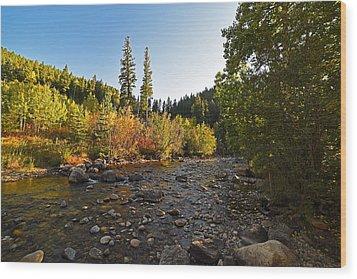 Boulder Colorado Canyon Creek Fall Foliage Wood Print