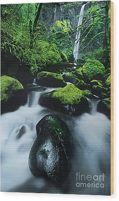 Wood Print featuring the photograph Boulder Elowah Falls Columbia River Gorge Nsa Oregon by Dave Welling