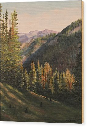 Boulder Pass Wood Print by Patti Gordon