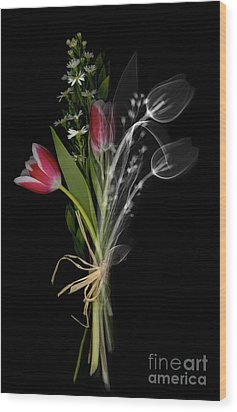 Bouquet X-ray Wood Print by Ted Kinsman