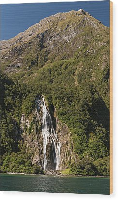 Wood Print featuring the photograph Bowen Falls Milford Sound by Gary Eason