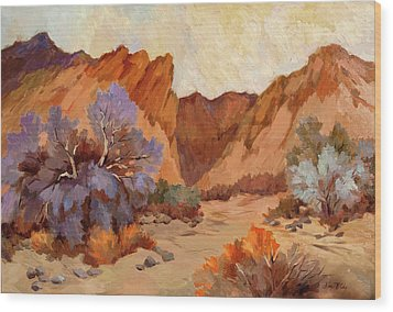 Box Canyon Wood Print by Diane McClary