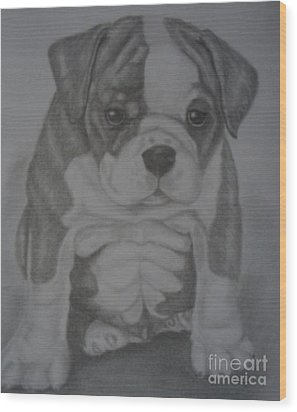 Boxer Puppy Wood Print by Ian Lennox