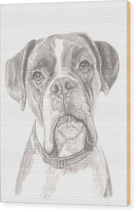 Boxer Wood Print by Rebecca Vose