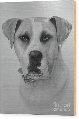 Boxer. Wood Print by Wayne Evans