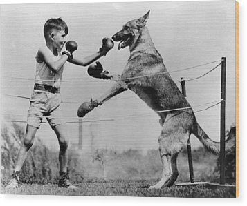 Boxing With Dog Wood Print by Topical Press Agency